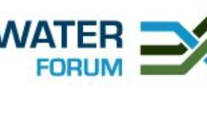 Water and Water Forum Logo